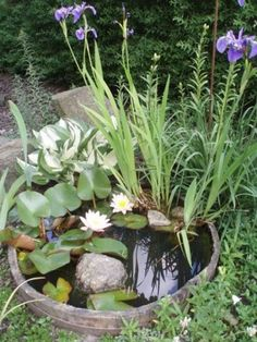 Awesome 30+ DIY Mini Ponds in a Pot http://gardenmagz.com/30-diy-mini-ponds-in-a-pot/
