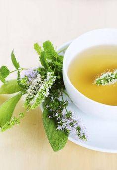 """Er schmeckt milder als andere Teesorten, hat aber viel mehr Kraft. Ein kanadischer Experte ist darum sicher: """"Wer viermal täglich weißen Tee trinkt, nimmt auch ohne Diät ab."""""""