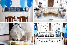 Themed Dog Party Kits from When Pooch Comes to Shove - Dog Milk