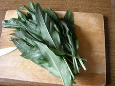 Muskátli Büfé: Medvehagyma krém Pesto, Spinach, Spices, Cooking Recipes, Vegetables, Drinks, Plants, Food, House