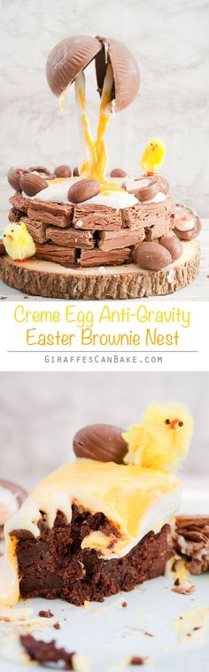 Creme Egg Anti-Gravity Brownie Easter Nest! - A truly decadent showstopper for Easter. Fudgy brownie covered in rich chocolate ganache and sitting in a Cadbury Flake nest. With a cracked chocolate egg spilling Creme Egg filling all over! With a photo guide for how I did it!