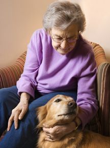 The Benefits of Pet-Assisted Therapy for People with Alzheimer's