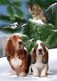Belle image de chiens et chat