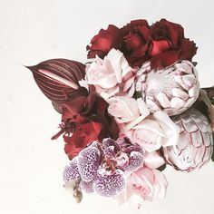 Blush and burgundy bouquet by Perth florist The Wildflower