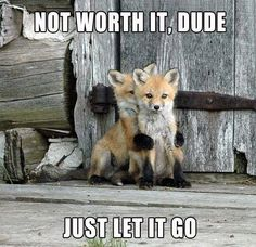 Not worth it, dude...