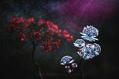 Misz-Masz by Magda Wasiczek on 500px