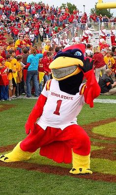 Iowa State Cyclone Pictures | Buy Iowa State Cyclones Tickets from an Iowa State ticket broker
