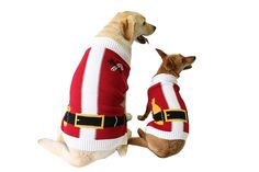 Ugly Christmas Sweater Santa Suit Dog Sweater >>> Discover this special dog product, click the image : Dog sweaters
