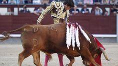 Notiferias Toros en Venezuela y el Mundo: Sebastián Castella, triunfador y autor de la mejor...