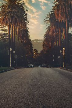 I love California, don't I? #palms #Hollywood