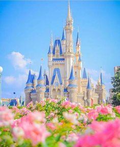 Wall Paper Disney Cinderella Disneyland 57 Ideas For 2019 Disney Dream, Disney Trips, Disney Love, Disney Parks, Walt Disney, Disney Animation Studios, Disney World Castle, Disney World Pictures, Disney Phone Wallpaper