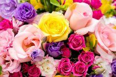Festa infantil jardim lorena inspire blog minha filha vai casar-27