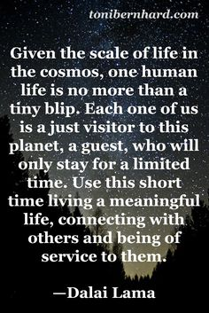 "The Dalai Lama...""Each one of us is just a visitor to this planet...Connect with others..."""
