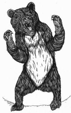 Bear by Richard 'FRENCH' Sayer