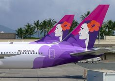 Hawaiian Airlines Tails at Honolulu Airport. one of the greatest liveries of all-time.