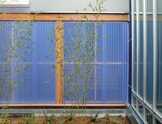 BCJ architects - acrylic walls