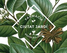 """Farmàcia Ciutat Jardí is a new pharmacy located in the city of Lleida, Catalunya. Ciutat Jardí means """"Garden City"""" and it's the name of the neighbourhood where the pharmacy is located. We designed the logo and brand identity incorporating old medical plan…"""
