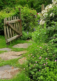 stone pathway,flowers everywhere,and a little rustic gate..this might be a nice idea for improving the pond area this spring ;)