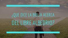 ¿QUE DICE LA BIBLIA ACERCA DEL LIBRE ALBEDRIO?