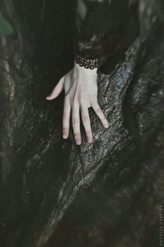 Natalia Drepina Photography