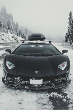 Going skiing with a Lambo.