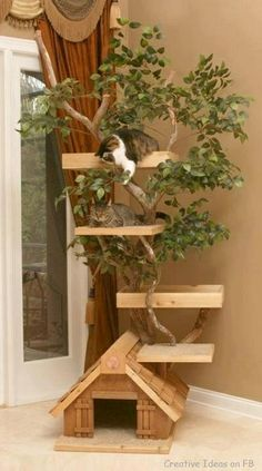cat tree - If I ever get a cat this would be neat!