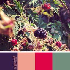 blackberry season - color palette