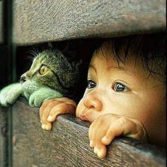 Discovering the world...❤️ #baby #cat #kitten #watchtheworld #love #life
