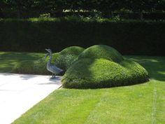 Fotogalerij :: Tuinen Denieplant - Aalter :: Voorbeelden, afbeeldingen, fotos, galerij, projecten, portfolio