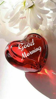 Good Morning images for Lover. Here you can find romantic Good Morning images for Lover with heart and roses. Please visit you wil like these images.