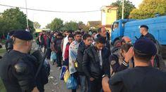 Migrants queue for coaches for registration centres in Tovarnik, Croatia - 18 September