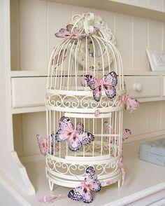 for a bird