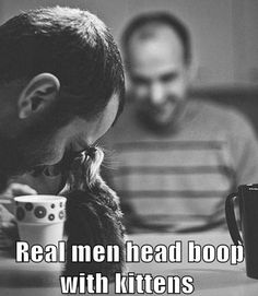 Real men head boop with kittens!