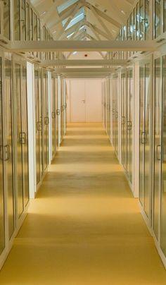 MAN Museo Arqueológico Nacional, España @MANArqueologico  #secretsMW En el #archivo se guardan más de 1.700 legajos y 40.000 fichas de inventario y catalográficas.