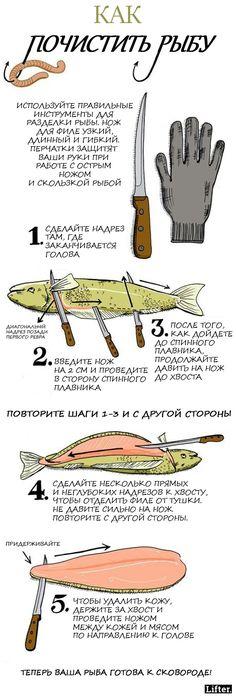 13 картинок, которые научат вас готовить. По-настоящему!