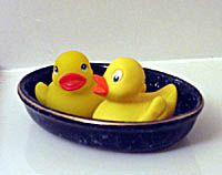 1/13 Rubber Duckie Day  Rubber Duckie Song