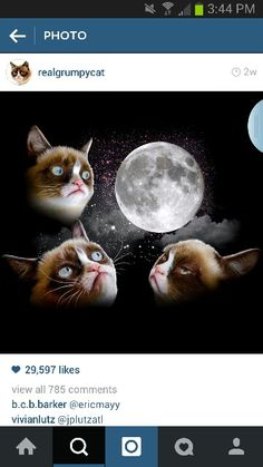 Three Grumpy Moon