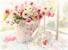 A beautiful spring day ! | Flickr – Condivisione di foto!