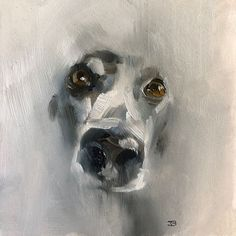 Hundeportrait/ Dog Painting/ Bella oil on board by Julie Brunn Animal Paintings, Animal Drawings, Art Drawings, Greyhound Art, Drawn Art, Dog Artwork, Guache, Wow Art, Art Graphique