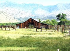 How Can You Write Off Improvements on a Ranch Like Fencing & Land Clearing?