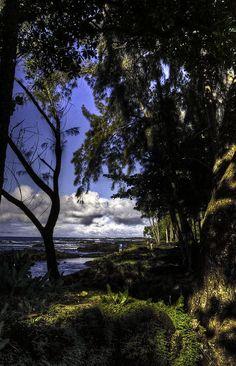 ✮ South of Hilo, Hawaii