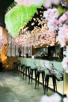 Vogue Eats: Sakura At Sake No Hana. I think the consistency in design works well from the glass backlit counter frontage to the lighting feature above it. This is further enhanced with to use of the pastel green/pink colour palette