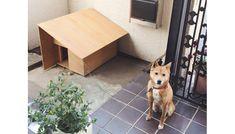 「大工の手」犬小屋 | 届けられる大工の手 | 【わざわ座】デザイン×ものづくりのプラットフォーム
