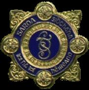 Garda Síochána (Police) badge of the Republic of Ireland Law Enforcement Badges, Police Box, Police Patches, Water Crafts, Firearms, Movie Tv, Ireland, Chicago, Stars