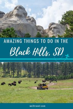 Fun things to do in the Black Hills of South Dakota (and the Badlands.) We lay out a day-by-day Black Hills itinerary including Devil's Tower Historic Deadwood Mount Rushmore Crazy Horse Custer State Park Badlands National Park and more. South Dakota Vacation, South Dakota Travel, South America Travel, North Dakota, Custer South Dakota, Deadwood South Dakota, Camp America, Rapid City South Dakota, North America