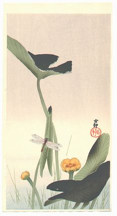 Ohara Koson: Lotus and Dragonfly