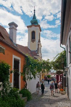 Wandering through the streets of Szentendre, Hungary Budapest Christmas, Beautiful Places, Beautiful Pictures, Hungary Travel, 7 Continents, Landscape Photography, Travel Inspiration, Viking River, Scenery