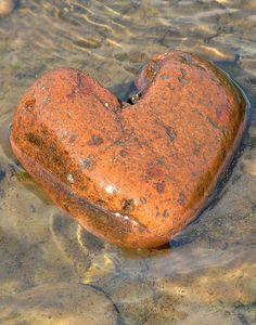 Heart shaped stone.
