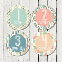 Monthly Milestone Stickers for Girls Monthly by happyhoursprints