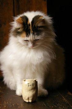 Cute Catty Caddy